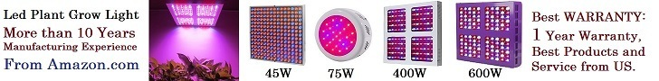 600W LED Lights