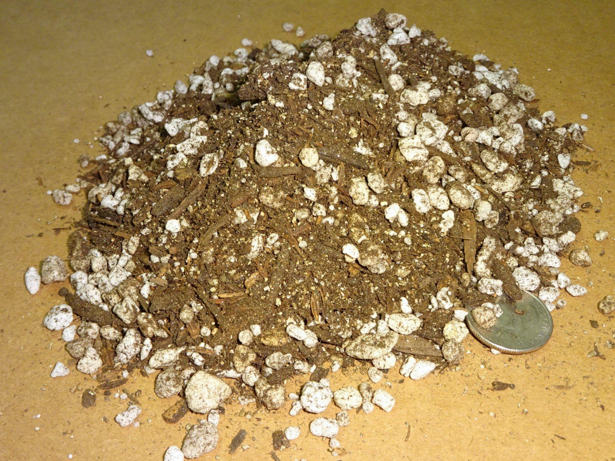 1-3-.5-.5 Kellogg cactus - patio plus - perlite - sta-green vermiculite1.JPG