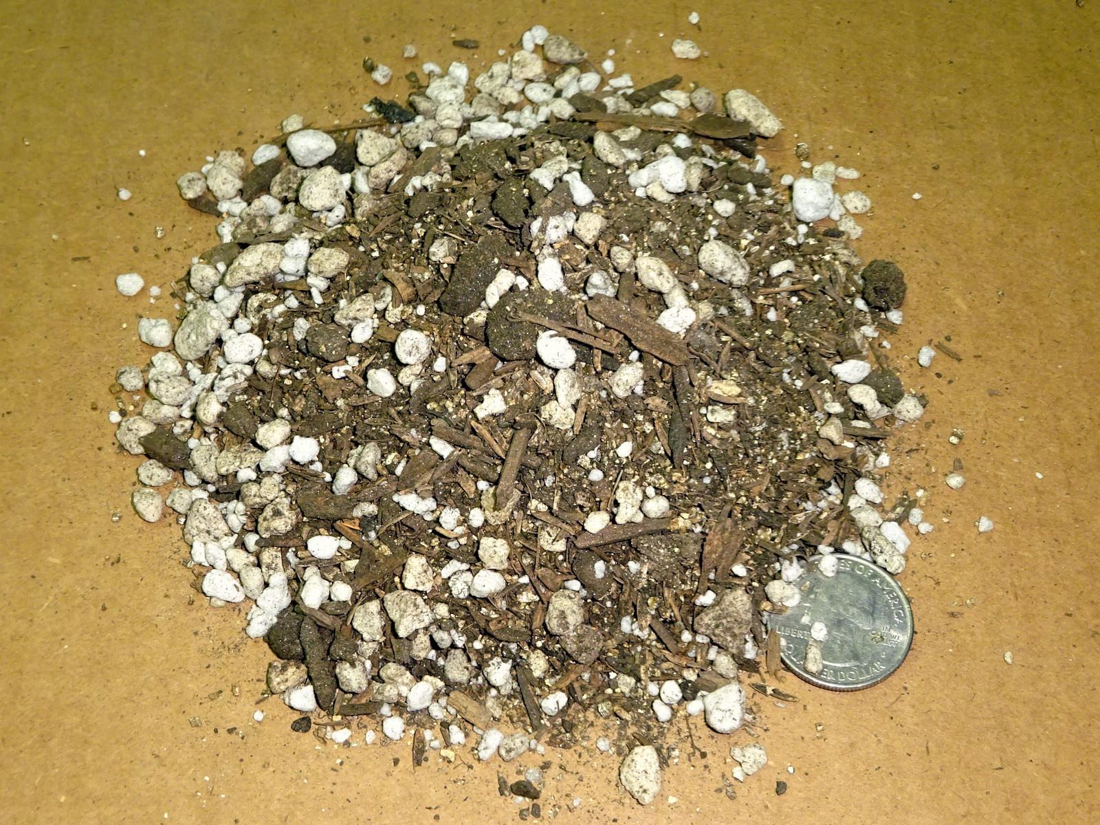 1-4-0.5-1-K-Cactus-K-PatioPlus-perlite-verm2.JPG