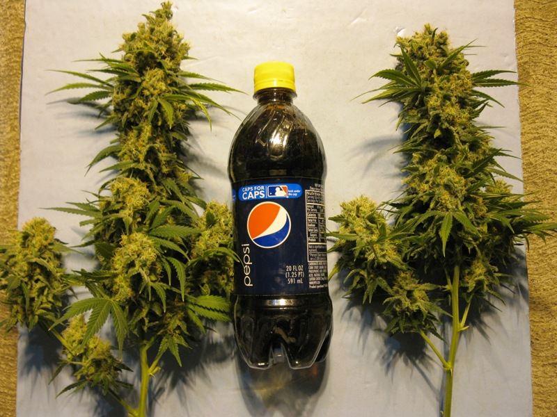 2 liter colas.JPG