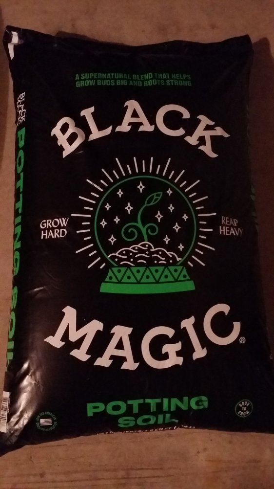 28++ Black magic soil ingredients ideas