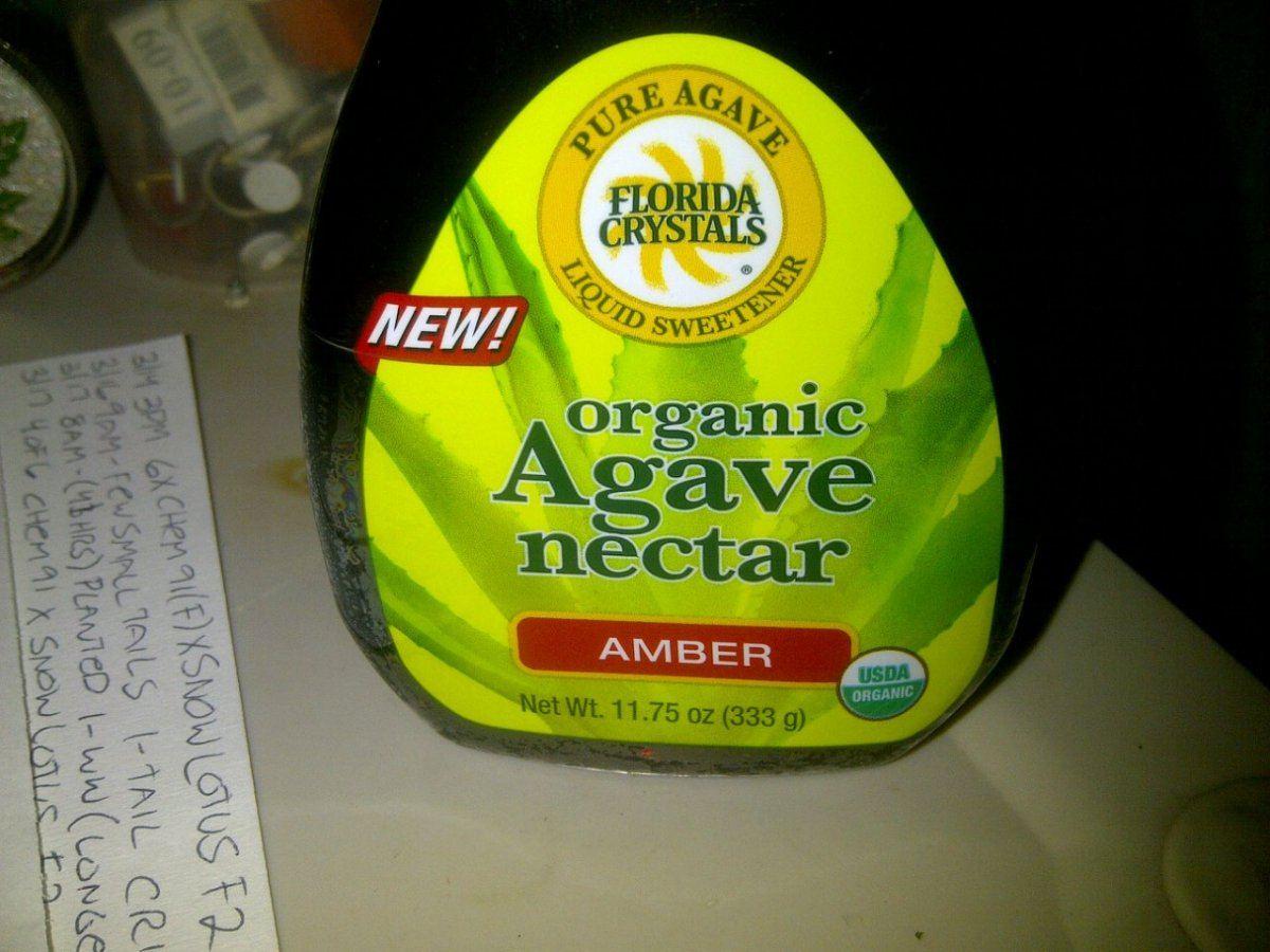 agave nectar.jpg