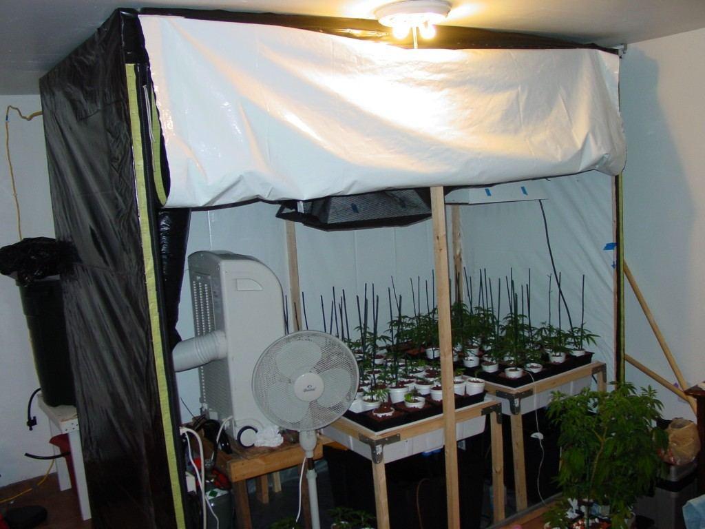 Make Your Own Grow Tent Cheap Page 3 Thcfarmer Cannabis