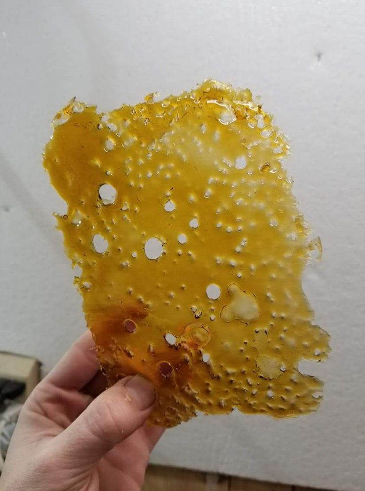Heat For Bho Purging | THCFarmer - Cannabis Cultivation Network