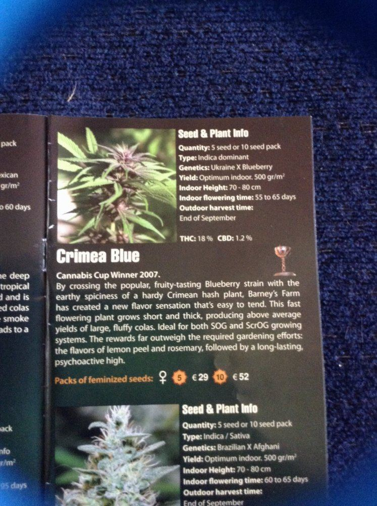 Kravens Grow   THCFarmer - Cannabis Cultivation Network
