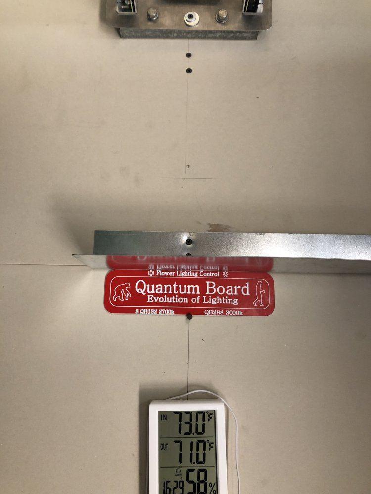 Quantum Light Flower Tent Build   THCFarmer - Cannabis