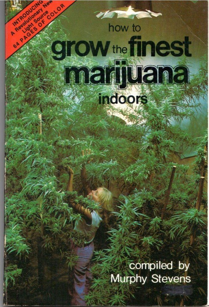 Indoors.0.cover.jpg
