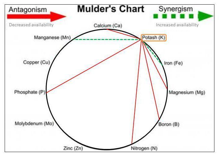 mulders-chart-excess-k-e1465939732543.jpg