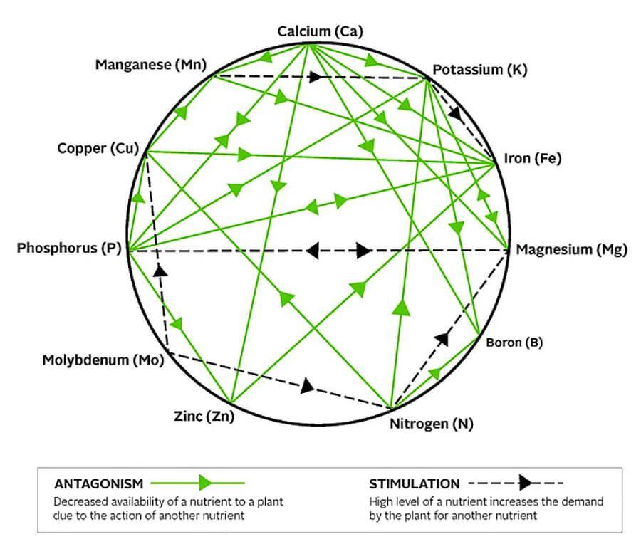 mulders-chart.jpg
