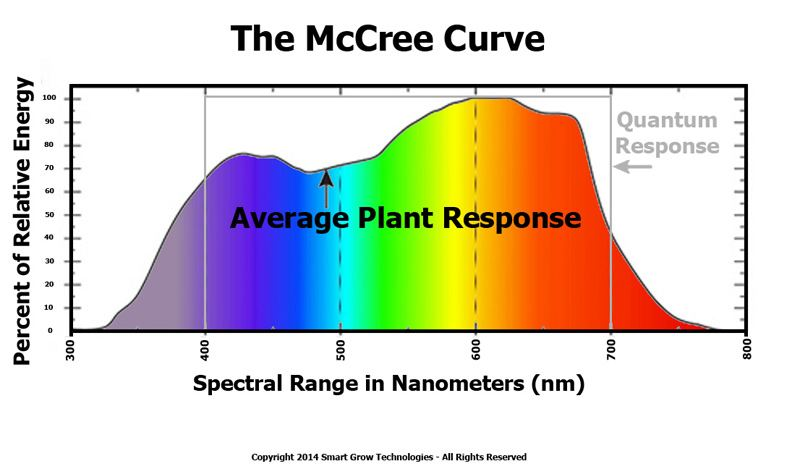 par_light_mccree_curve.jpg