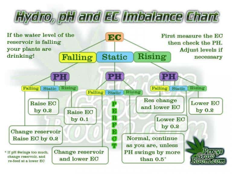 PH-and-EC-fluctuations-in-Hydroponics-768x576.jpg
