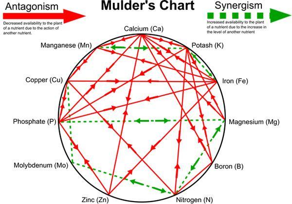 resourcesmulders-chart.jpg