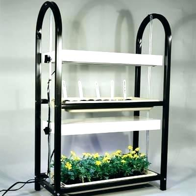 seed-starting-light-starter-grow-lights-2-tier-plant-stand-trays-vegetable-seeds-indoors.jpg