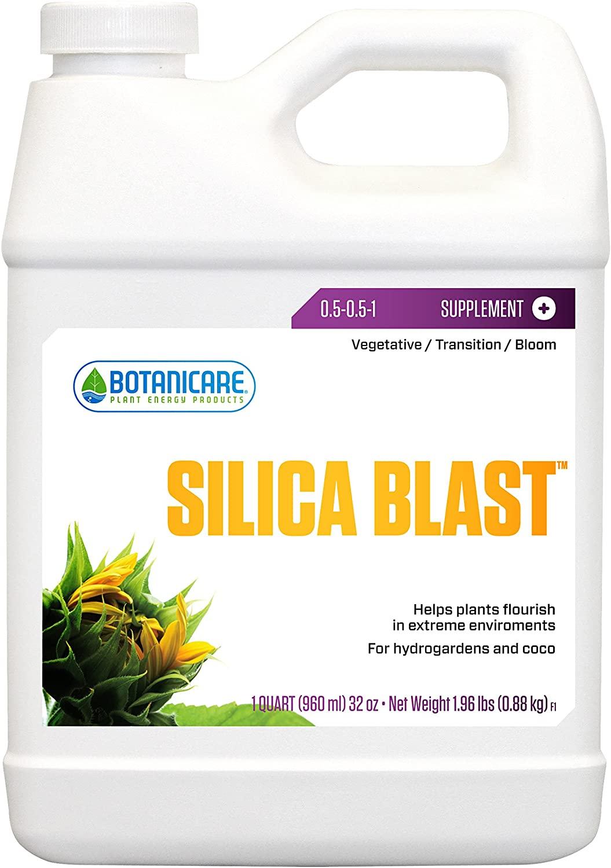 SilicaBlast.jpg