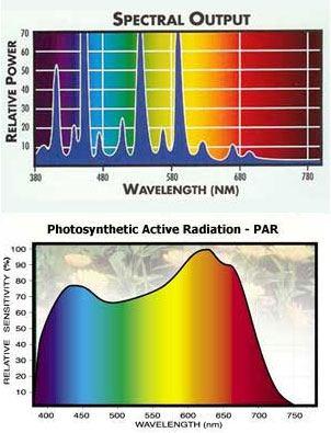 spectral-par.jpg