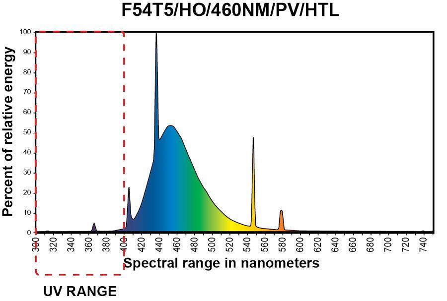 spectrum-460.jpg