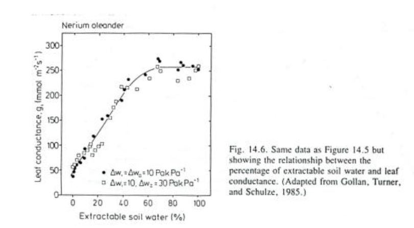 stomatal conductance vs moisture.jpg