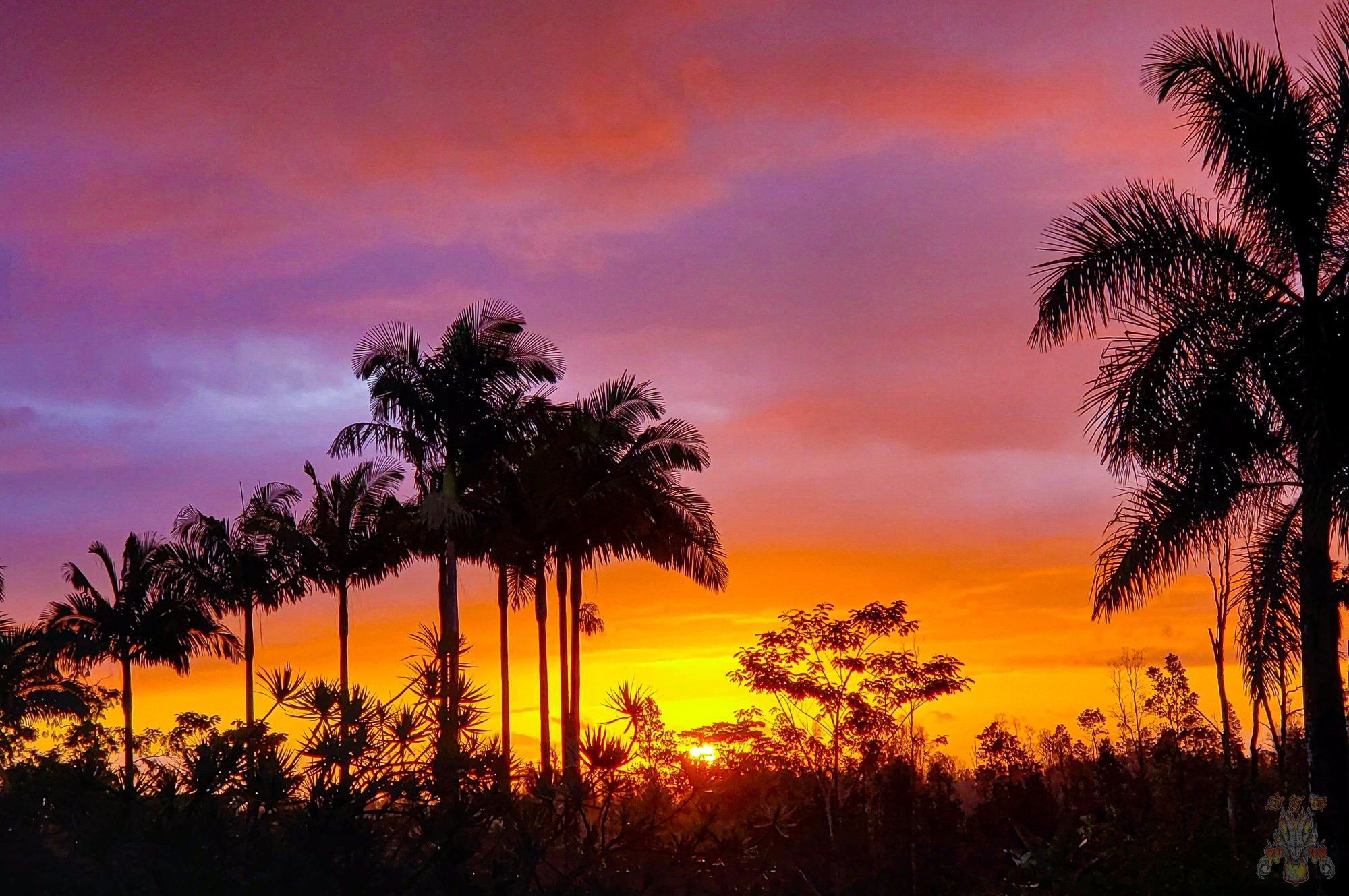 sunrise -5.jpg