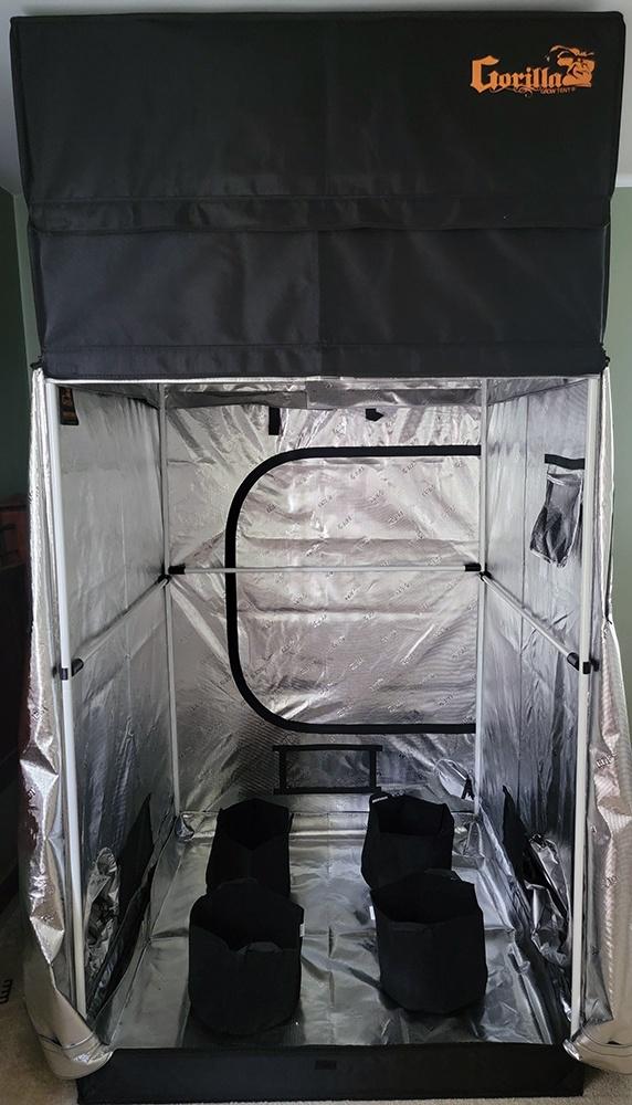 tent5.jpeg