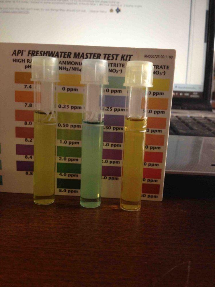 Water_test.jpg