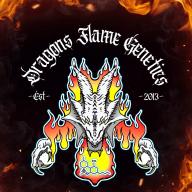 Dragonsflame