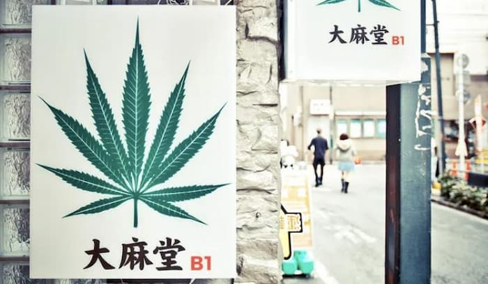Japan's Cannabis Policy Is Moving In The Wrong Direction